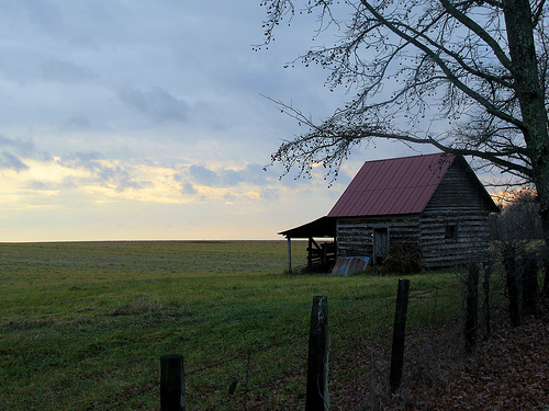 Pasture Land in Campbell County